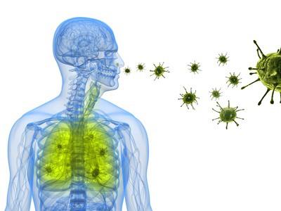 Abbildung einer Lunge - Bakterien werden eingeatmet